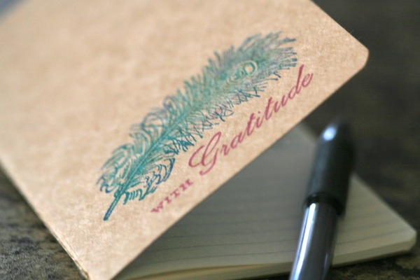 Daily Gratitude Journal and Morning Pages