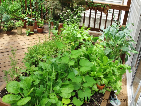 Garden salad table